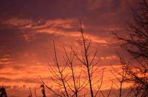 red-morning-sky